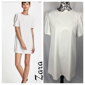 Zara Shift Dress with Pearl Sleeves